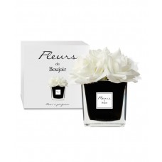 Bouquet Rose Bianche Vaso Nero